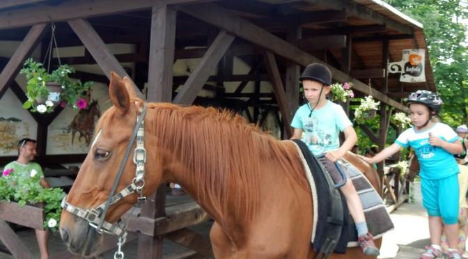 Koně pro děti na Pašůvce II
